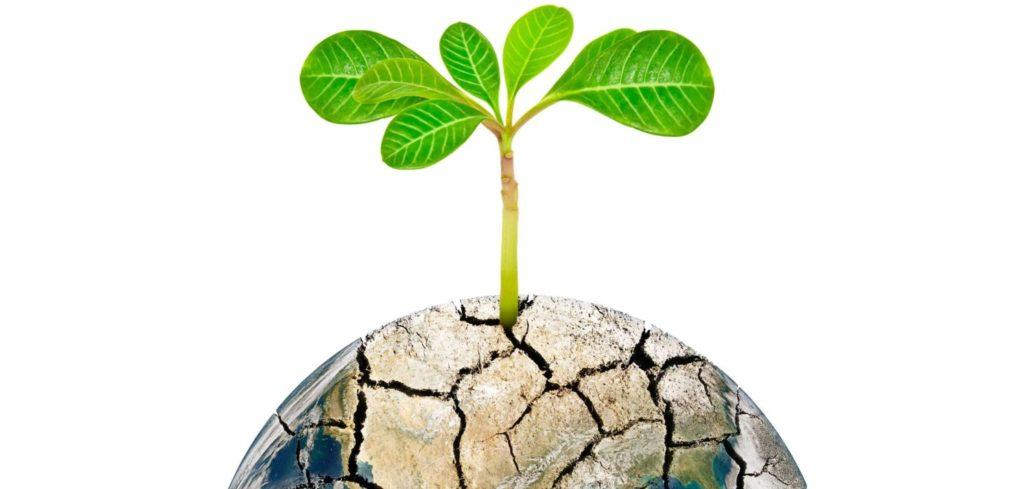 イザヤ・ベンダサン氏「日本人は水と安全はタダと思っている」人間が一番大切にしていかなければならないのは水